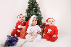 Chéris de Noël Photographie stock libre de droits