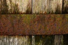 Chêne et rouille Photo stock
