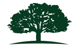 Chêne Logo Design Template illustration stock