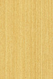 Chêne (texture en bois) photo stock