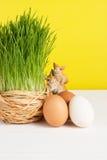 Chíbese el pote con los huevos del pollo en el tablero blanco y el fondo amarillo Foco selectivo, imagen entonada Foto de archivo libre de regalías