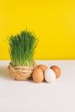 Chíbese el pote con los huevos del pollo en el tablero blanco y el fondo amarillo Foco selectivo, imagen entonada, efecto de la p Imagen de archivo libre de regalías