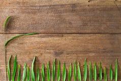 Chíbese las hojas de la flor y del verde en fondo de madera del vintage sucio del grunge Fotografía de archivo