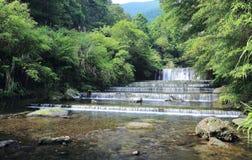 Chłodno odświeżenie kaskady strumień chujący w tajemniczym lesie luksusowy greenery fotografia stock