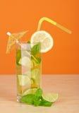 Chłodno odświeżenie napój w szkle Zdjęcia Royalty Free