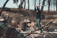 Chłodny mężczyzna ciie gęstego stałego popiółu drzewa zbiera drewno dla zimnej zimy obrazy stock