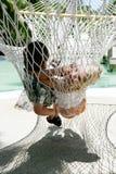 chłopak dziewczyny hammock Fotografia Stock