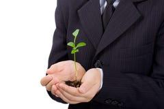 chłopak jest roślinnych występować samodzielnie dłonie Zdjęcie Stock