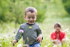 chłopcy łąki Obraz Royalty Free