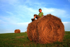 chłopcy łąki Zdjęcie Royalty Free