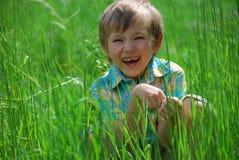 chłopcy łąki Obraz Stock