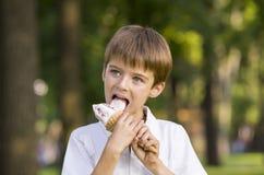 chłopcy jeść kremowy lodu Zdjęcia Stock