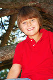chłopcy wspinaczkowy drzewo Fotografia Royalty Free