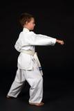 chłopcy wykazuje właściwe nastawienie karate. Zdjęcie Stock