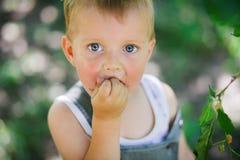 Chłopiec łasowania jagody Obrazy Royalty Free