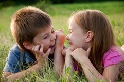 chłopiec śmieszna dziewczyny trawa Zdjęcia Royalty Free