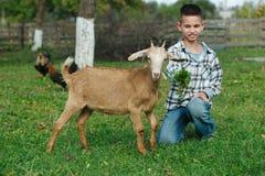 Chłopiec żywieniowa kózka w ogródzie zdjęcie stock