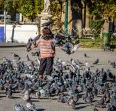 Chłopiec żywieniowi pidgeons na placu Murillo - los angeles Paz, Boliwia Zdjęcia Stock