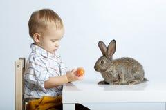 Chłopiec żywieniowy królik z marchewką obrazy royalty free