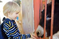 Chłopiec żywieniowy osioł Dziecko w migdalić zoo Dzieciak ma zabaw? w gospodarstwie rolnym z zwierz?tami Dzieci i zwierz?ta zdjęcia royalty free