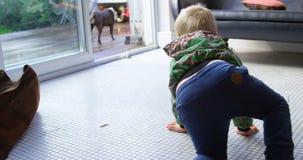 Chłopiec bawić się z jego zwierzę domowe psem 4k w domu zbiory