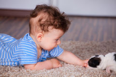 Chłopiec bawić się z szczeniakiem Obrazy Royalty Free