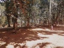 Chłopiec chodzi samotnie w pustym parka BSD mieście fotografia royalty free