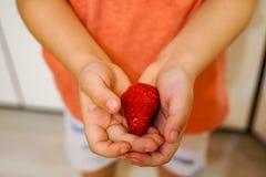 Chłopiec chwyty w jego wręczają czerwonej truskawki zdjęcia stock
