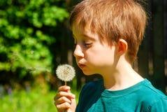 Chłopiec ciosy na dandelion kwitną w świetle słonecznym w ogródzie Fotografia Stock