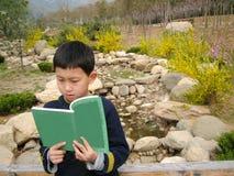Chłopiec czytanie w parku z menchii i koloru żółtego kwiatami Zdjęcie Stock
