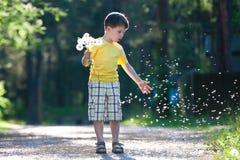 chłopiec dandelion zabawa ma małych ziarna obraz stock