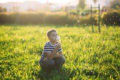 Chłopiec dmucha dandelion w pasiastej koszulce Wiosna, pogodna pogoda obraz royalty free