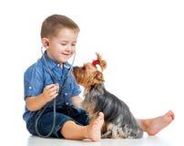 Chłopiec dziecko egzamininuje psiego szczeniaka na białym tle Obrazy Stock