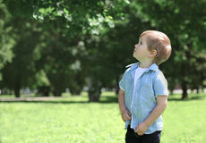 Chłopiec dziecko outdoors w zielony pogodny parkowy przyglądający up Zdjęcie Stock