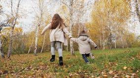 Chłopiec i dziewczyna biegający w brzoza lesie zbiory wideo