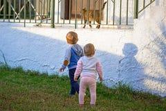 Chłopiec i dziewczyny bliźniacy Obrazy Royalty Free