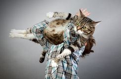 Chłopiec i kot zdjęcie royalty free