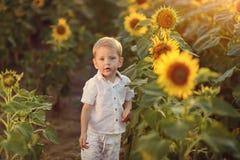 Chłopiec i słonecznik Obrazy Royalty Free
