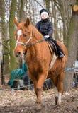 chłopiec jeździec Zdjęcia Stock