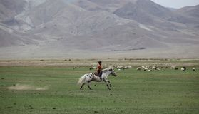 Chłopiec Jeździec Fotografia Royalty Free