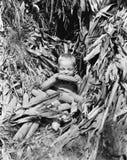 Chłopiec je kukurydzanego cob w kukurydzanym polu (Wszystkie persons przedstawiający no są długiego utrzymania i żadny nieruchomo Obraz Stock
