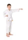 chłopiec karate mały ćwiczyć obraz stock