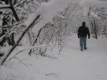 Chłopiec która chodzi w drewnach podczas opadu śniegu zdjęcie royalty free
