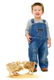 chłopiec kurczaków ubrań gospodarstwo rolne zdjęcia stock