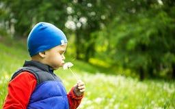 Chłopiec 4, 5 - lat bawić się plenerowy na tle W Śródpolnym Podmuchowym Dandelion Chłopiec młody Obsiadanie obrazy stock
