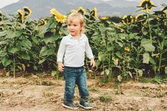 chłopiec mały portret Zdjęcie Royalty Free