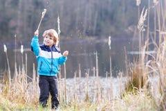 Chłopiec ma zabawę z sitowiem blisko lasowego jeziora Obraz Royalty Free
