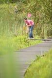Chłopiec mienia motyla sieć W lesie fotografia royalty free