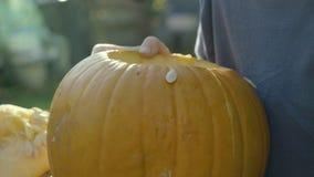 Chłopiec muska spoonful Halloweenową przerażającą głowę Dziecko ręki rzeźbią Halloween bani strach na wróble zbiory wideo