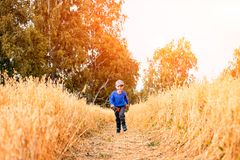 Chłopiec na pszenicznym polu zdjęcie royalty free